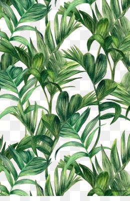 kisspng leaf green electric arches wallpaper palm leaf 5a6fb06b2f3ba5.8850960015172690991935