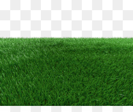 rumput sintetis unduh gratis rumput sintetis rumput karpet balkon taman rumput sintetis gambar png rumput sintetis gambar png