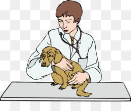 7000 Gambar Animasi Dokter Hewan HD Terbaik