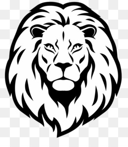 Auman Singa Unduh Gratis Kelinci Lionhead Menggambar Sketsa