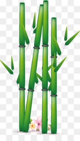 rumput gambar bambu gambar png rumput gambar bambu gambar png