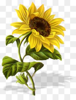 80+ Gambar Bunga Matahari Versi Kartun Terbaik