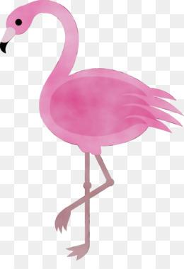Unduh 98+ Foto Gambar Burung Flamingo Kartun HD Terbaru